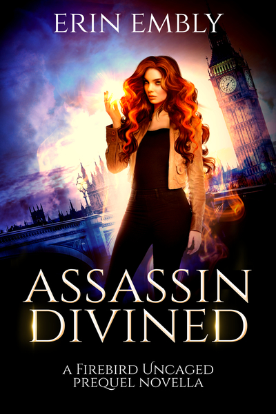 Assassin Divined by Erin Embly