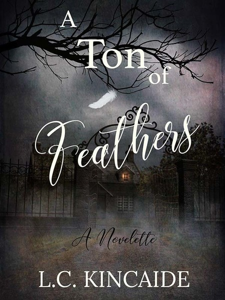 A Ton Of Feathers by L.C. Kincaide