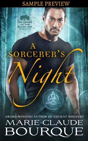 A SORCERER'S NIGHT - SAMPLE PREVIEW by Marie-Claude Bourque
