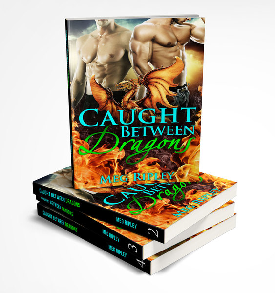 The Caught Between Dragons Series by Spellbound Shifter Romance