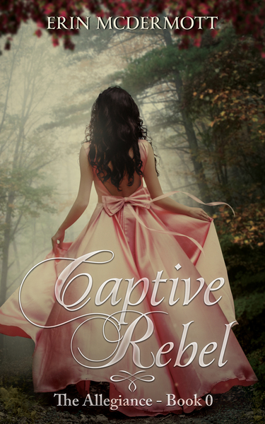 Captive Rebel by Erin McDermott