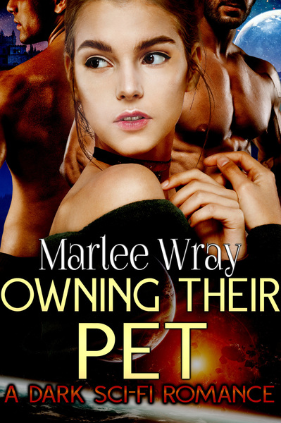 Owning Their Pet by Stormy Night Publications