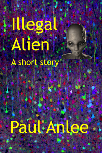 Illegal Alien by Paul Anlee