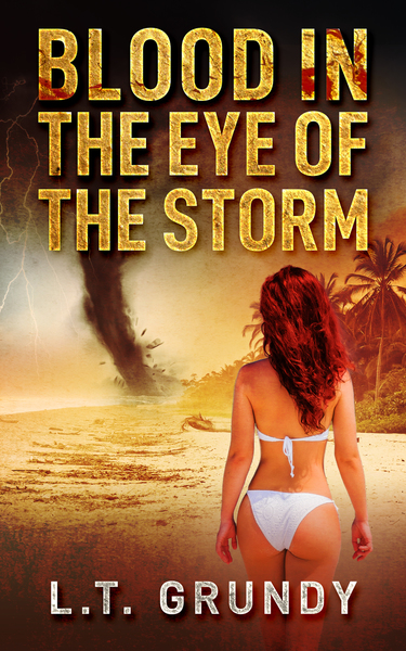 Blood In The Eye Of The Storm Book 3 by L.T. Grundy