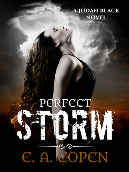 Perfect Storm by E.A. Copen