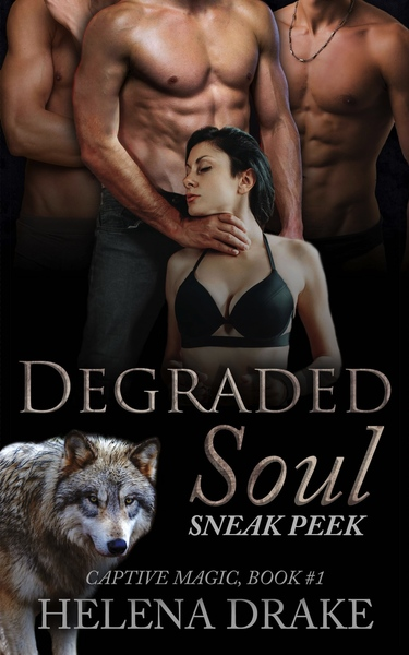 Degraded Soul Sneak Peek by Helena Drake