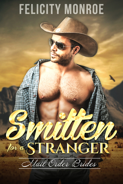 Smitten for a Stranger by Felicity Monroe