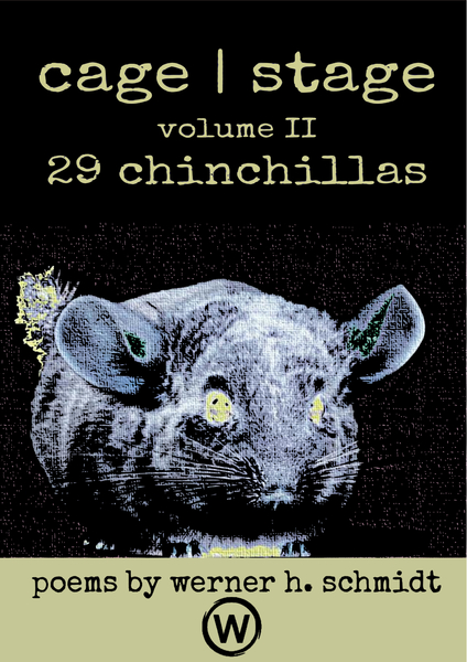 29 Chinchillas by Werner Schmidt