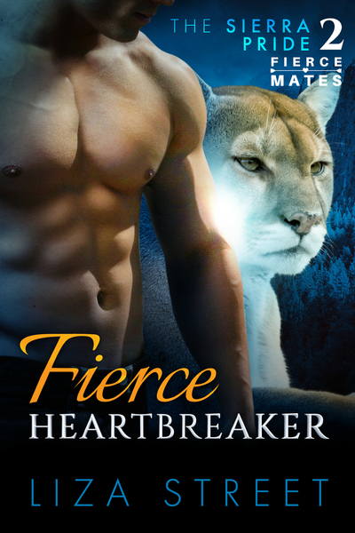 Fierce Heartbreaker by Liza Street
