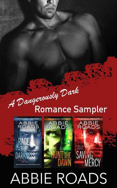 Dangerously Dark Romance Sampler by Abbie Roads