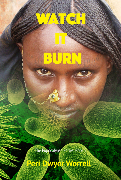 Watch It Burn by Peri Dwyer Worrell
