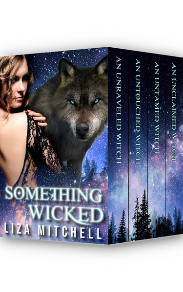 Something Wicked: The Complete Series by Liza Mitchell