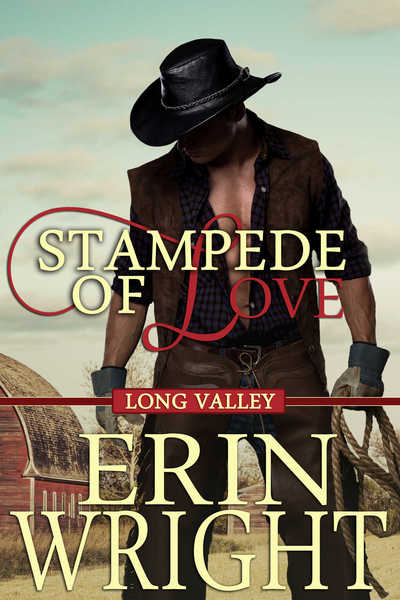 Stampede of Love - A Long Valley Romance Novella by Erin Wright