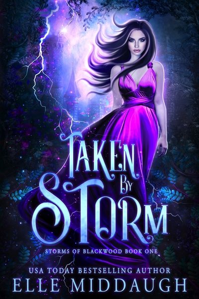 Taken By Storm by Elle Middaugh