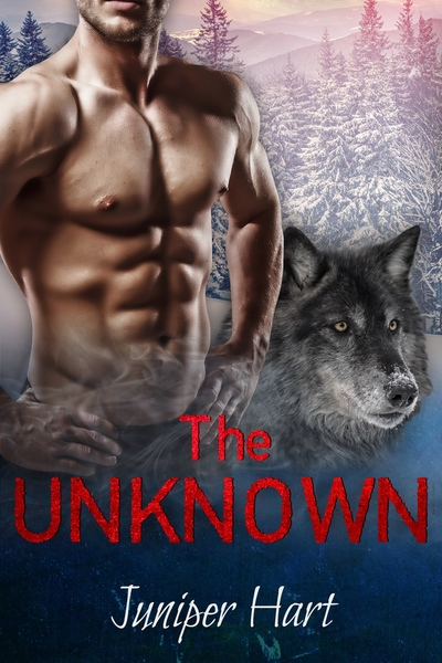 The Unknown by Deals on Romance