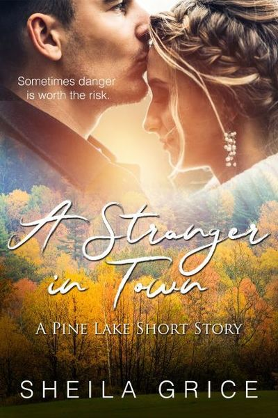 A Stranger in Town by Sheila Grice