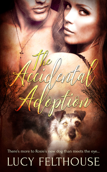 The Accidental Adoption by Lucy Felthouse