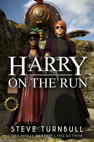 Harry on the Run by Steve Turnbull