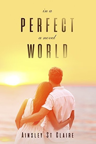 In a Perfect World by Ainsley St Claire