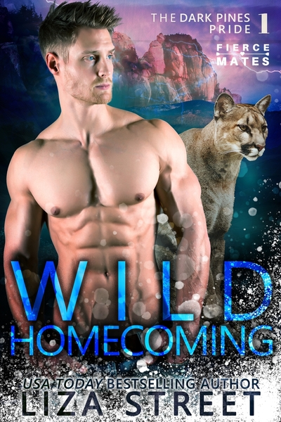Wild Homecoming by Liza Street
